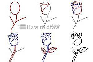 how to draw a rose with pencil 5