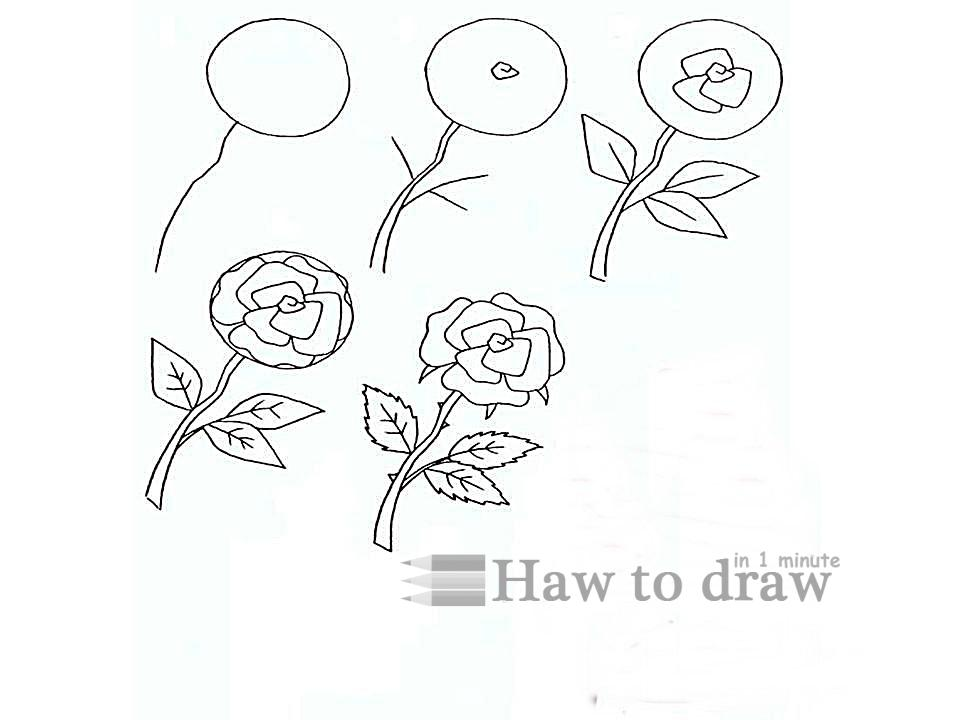 how to draw a rose with pencil 9