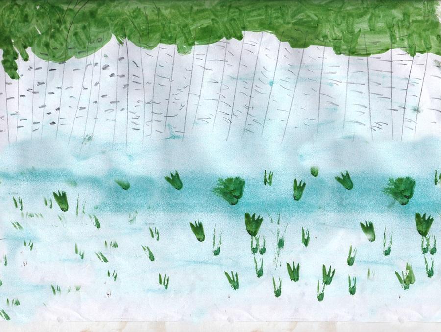 birch forest сhildren drawing (36)