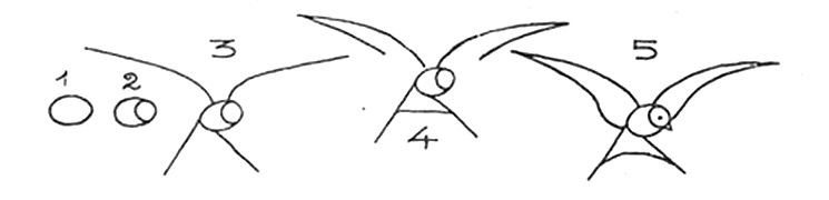 How to draw a bird drawings of swallow 2,3