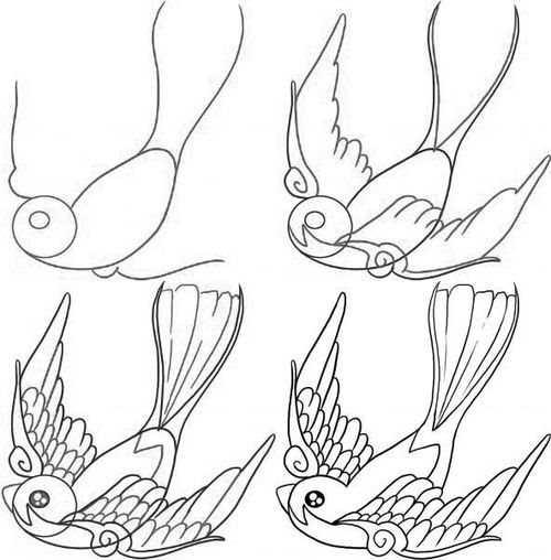 How to draw a bird drawings of swallow