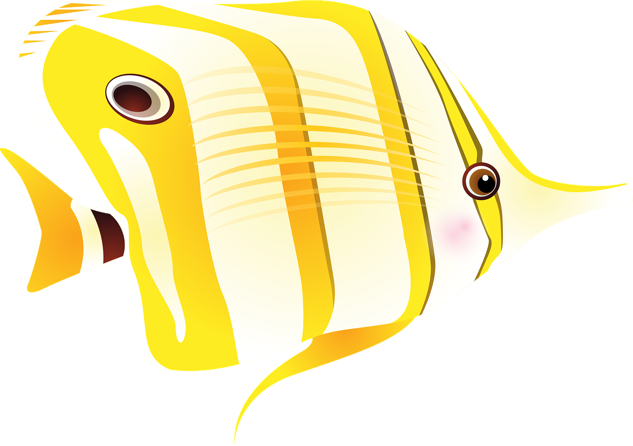How to draw a fish - the best 1