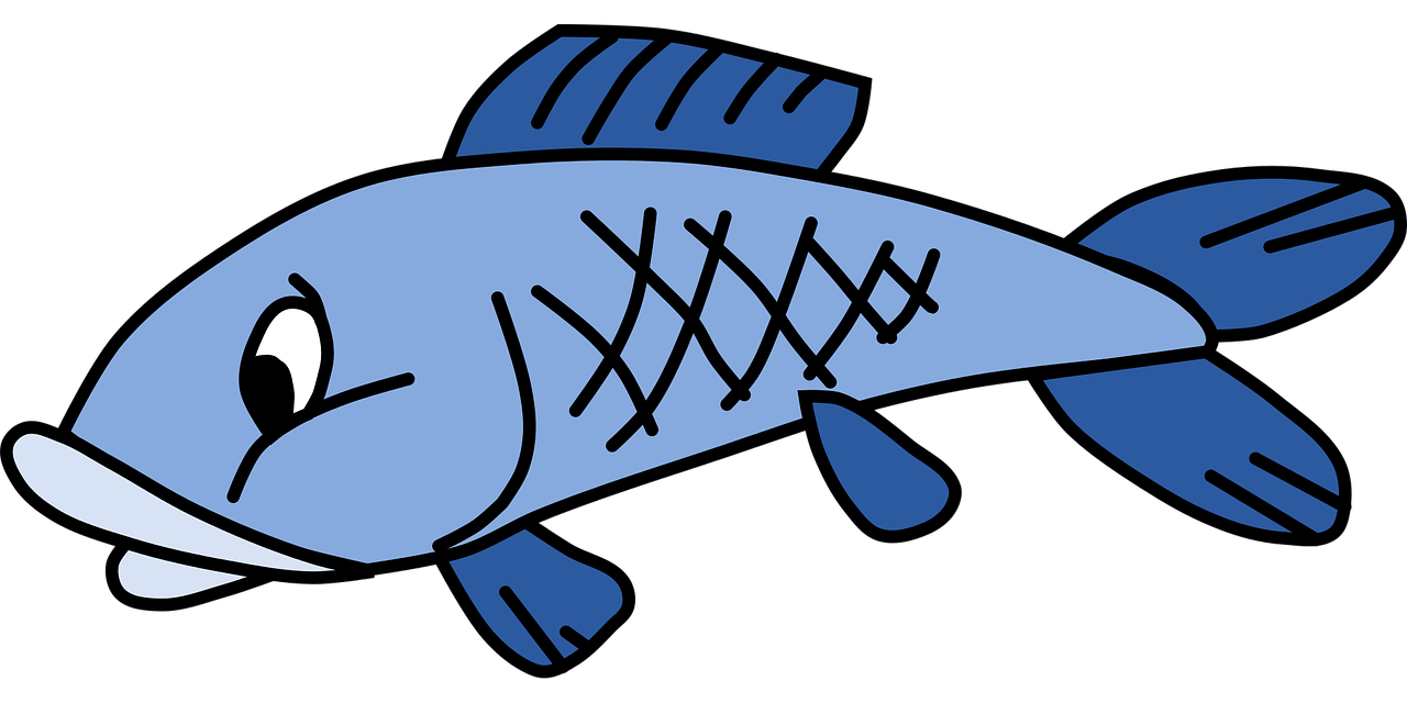 How to draw a fish - the best 11