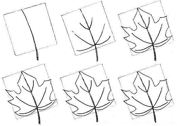 How to draw a leaf step by step 1 (7)