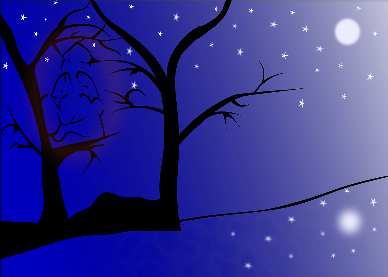 How to draw night, night landscape 12