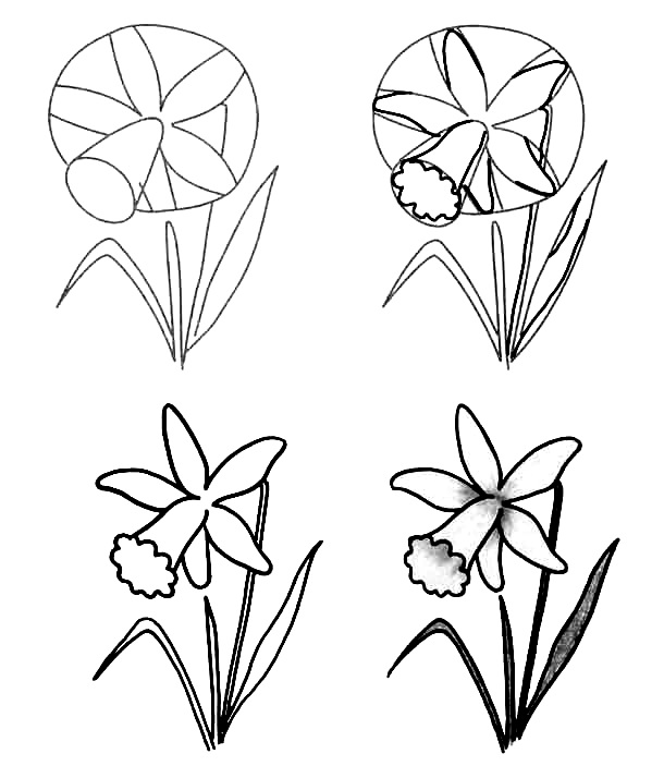 Wildflowers drawing 11