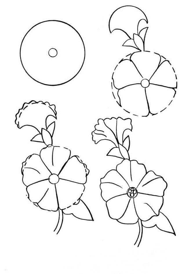 Wildflowers drawing 15