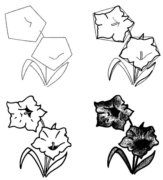 Wildflowers drawing 2
