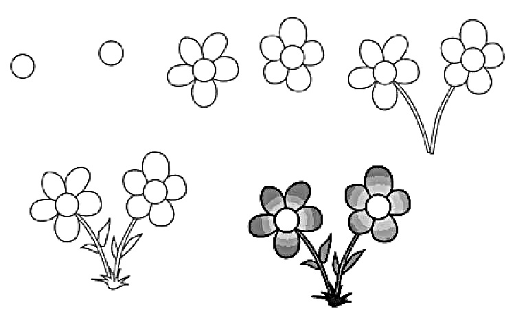 Wildflowers drawing 5