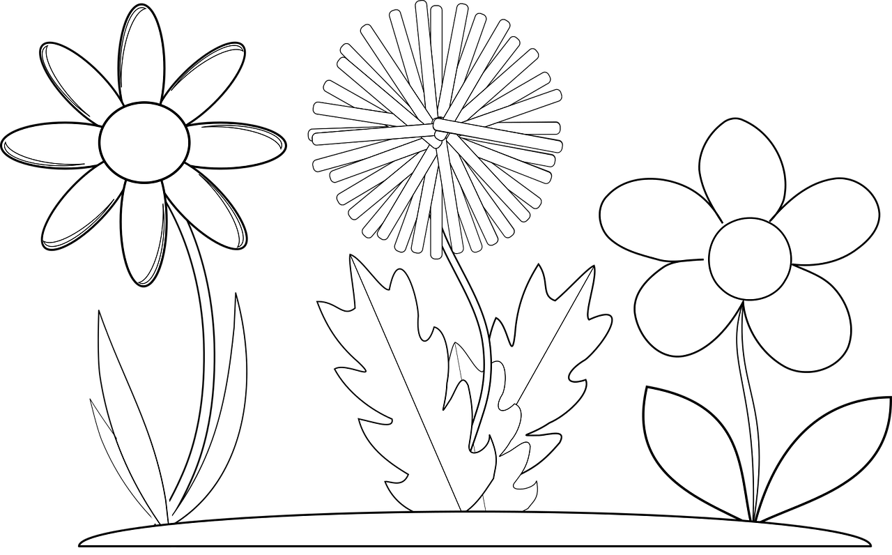 Wildflowers drawing - coloring pages free for kids 2