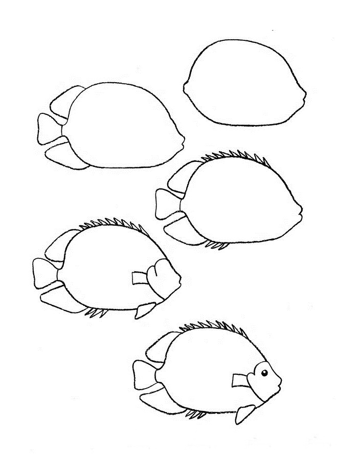 how to draw a fish 13