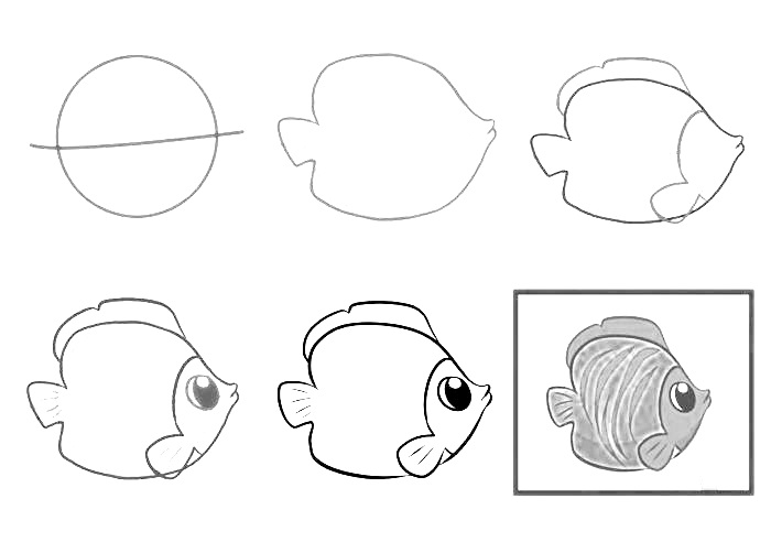 how to draw a fish 17