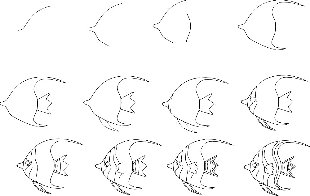 how to draw a fish 21