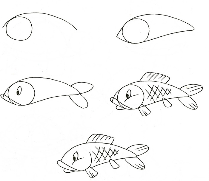 how to draw a fish 31
