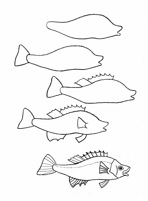 how to draw a fish 32