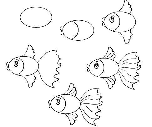 how to draw a fish 37