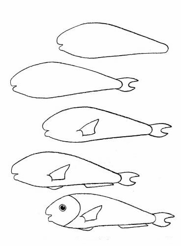 how to draw a fish 40