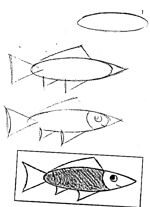 how to draw a fish 41