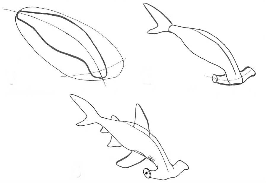 how to draw a fish 44