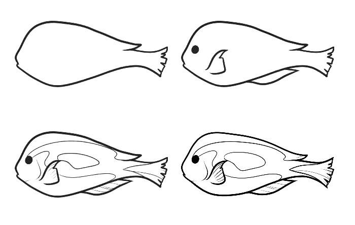 how to draw a fish 51
