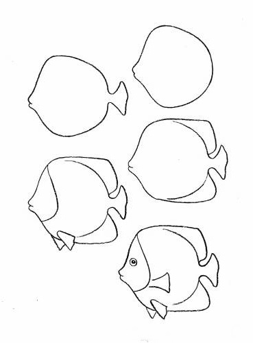 how to draw a fish 52