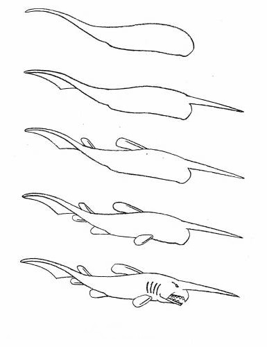 how to draw a fish 56