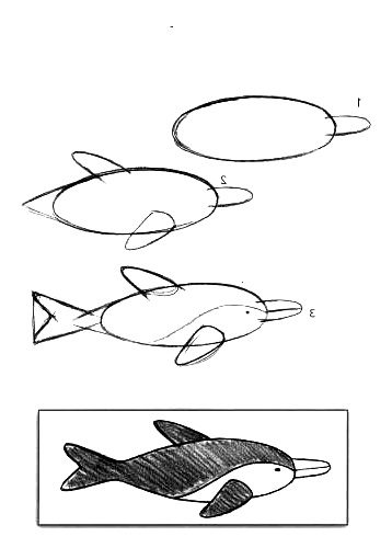 how to draw a fish 57