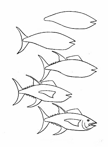 how to draw a fish 58