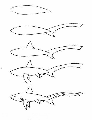 how to draw a fish 60
