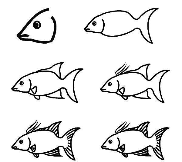 how to draw a fish 67