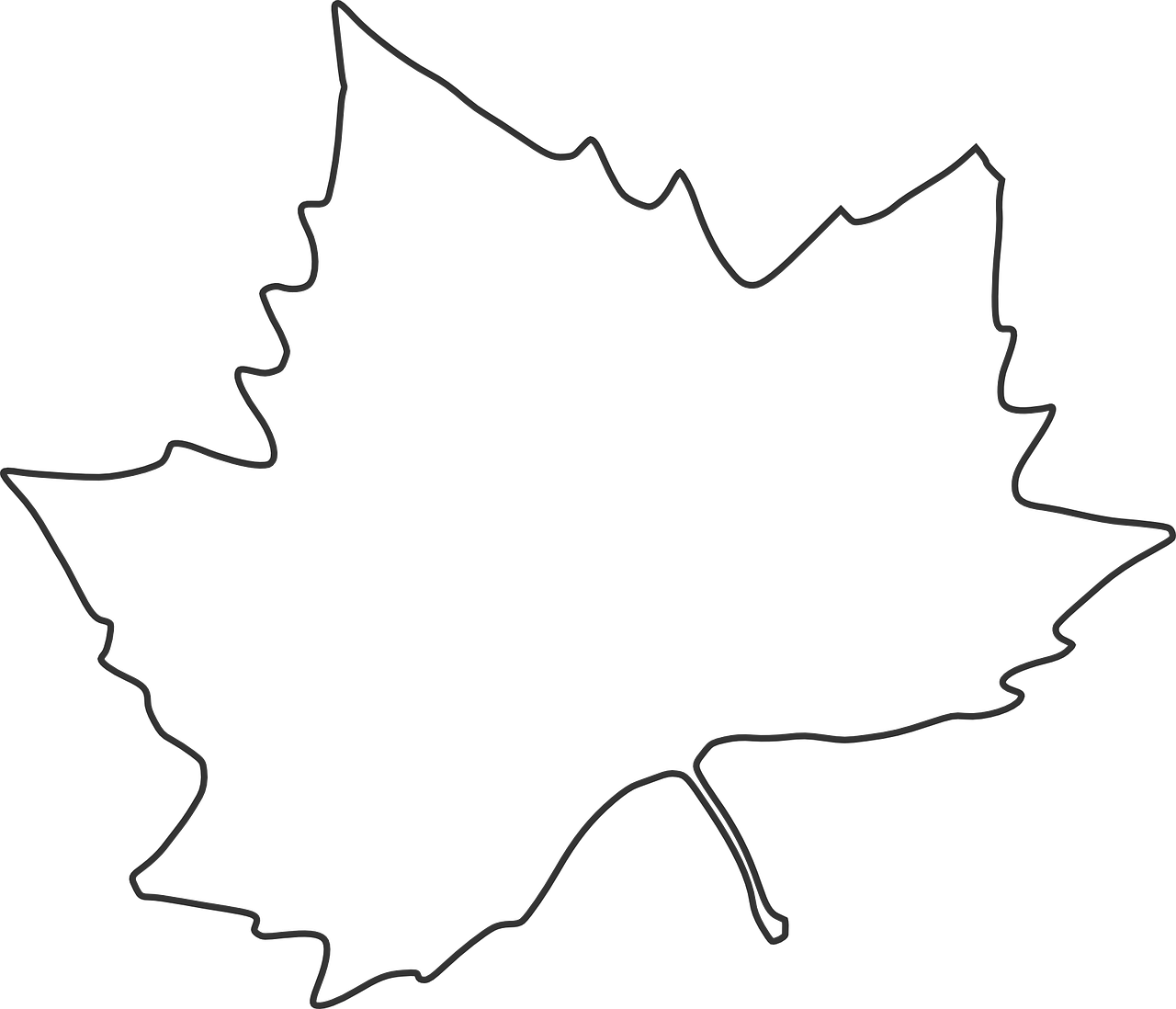 how to draw a leaf free printable leaf coloring pages