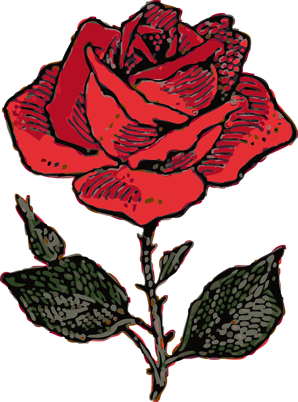 how to draw a rose 10