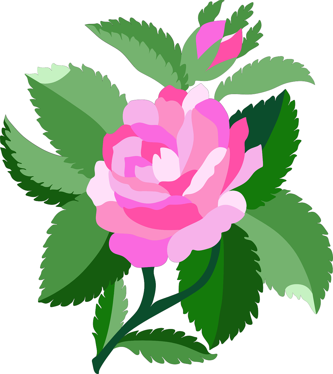 how to draw a rose 12