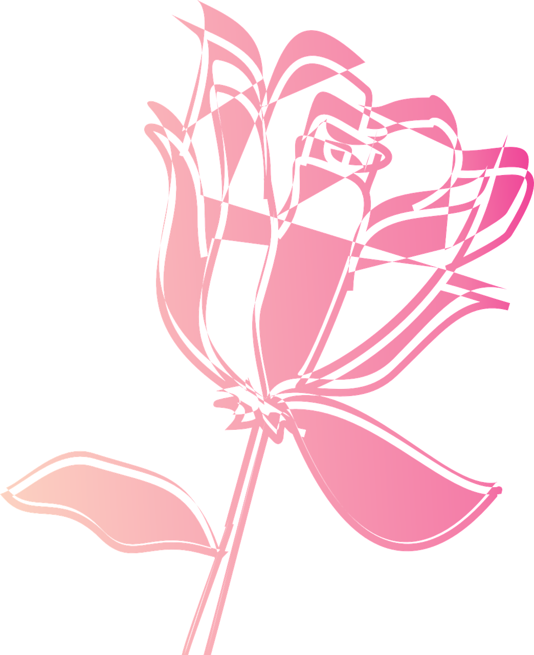 how to draw a rose 13