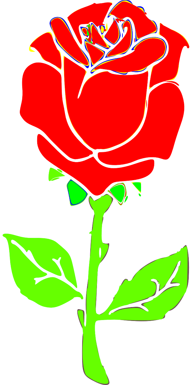 how to draw a rose 15