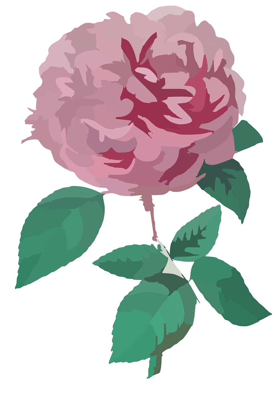how to draw a rose 16