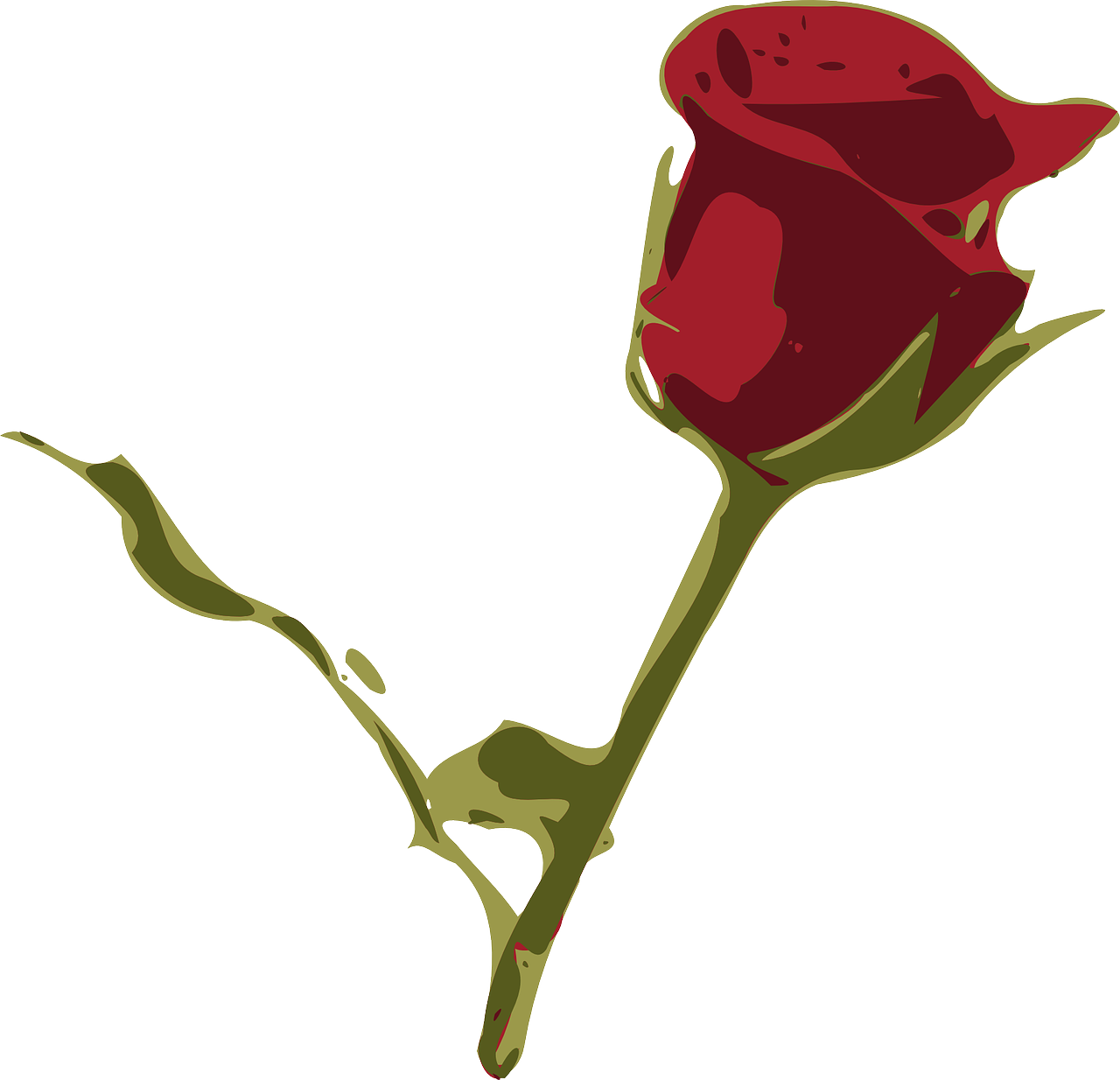 how to draw a rose 6