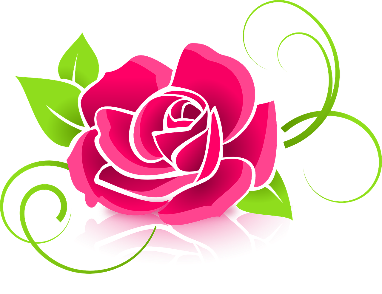 how to draw a rose 8