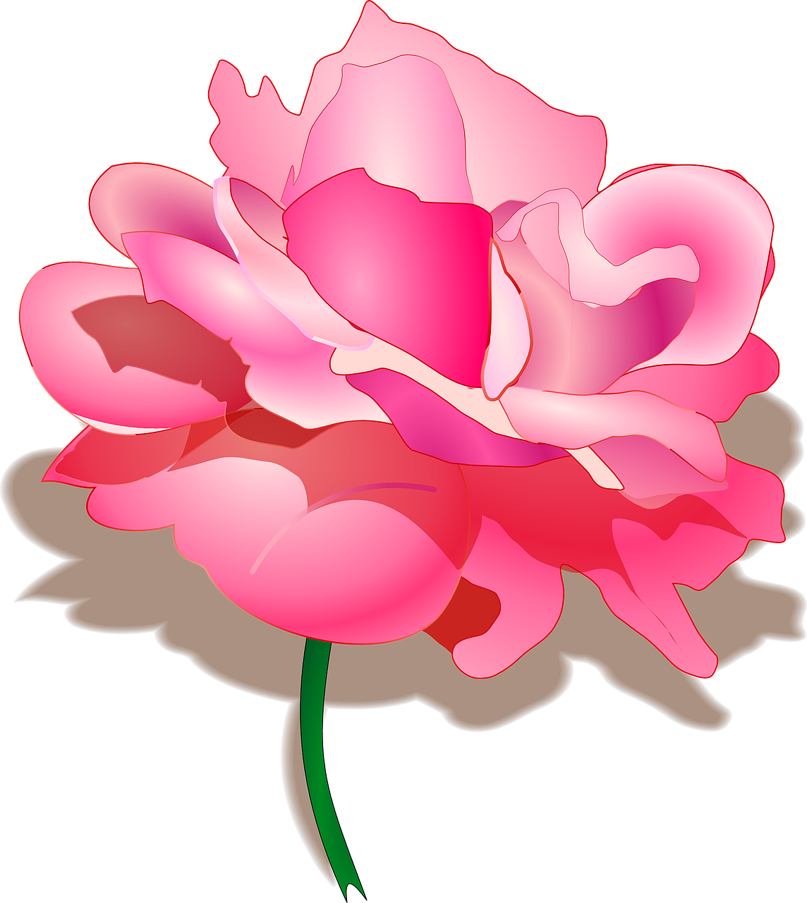 how to draw a rose 9