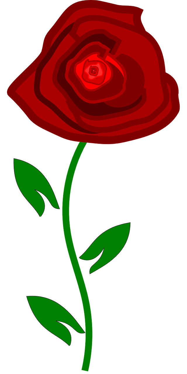 how to draw a simple rose 1