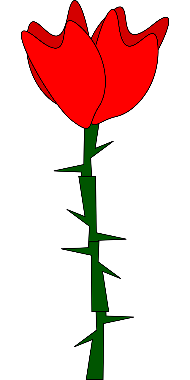 how to draw a simple rose 6