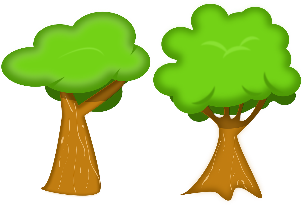 how to draw a tree 1