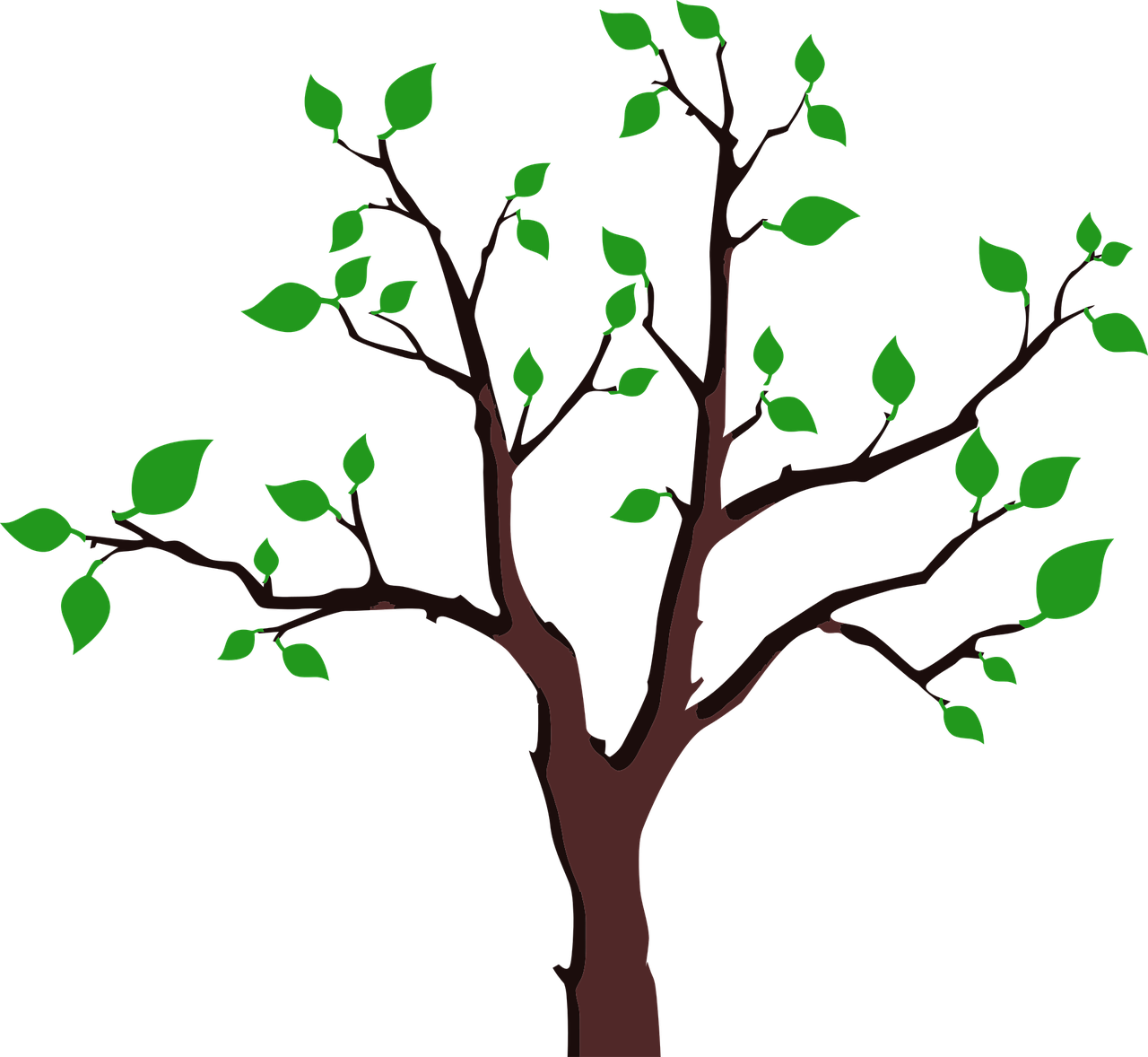how to draw a tree 8
