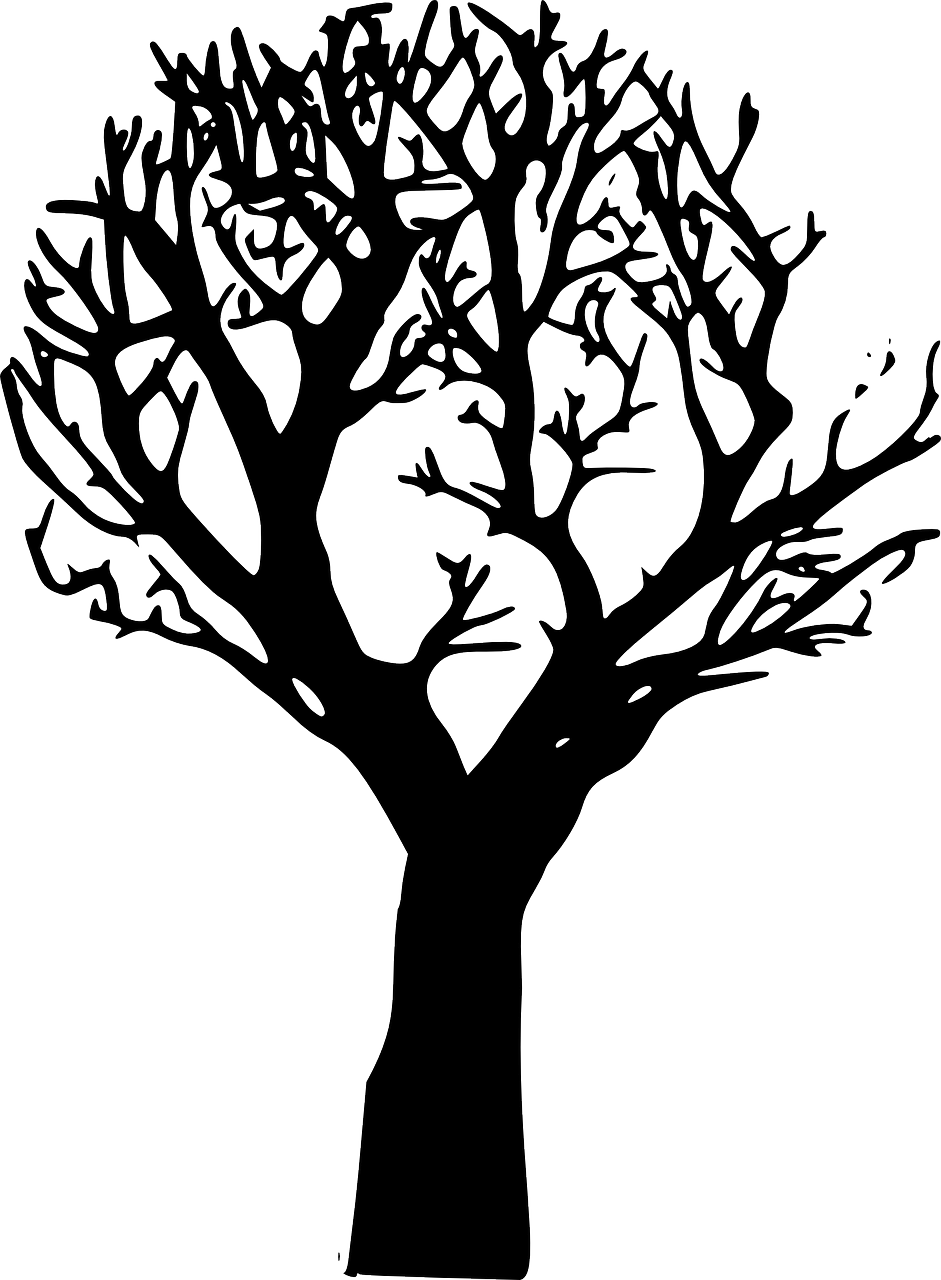 how to draw a tree, stencil 3