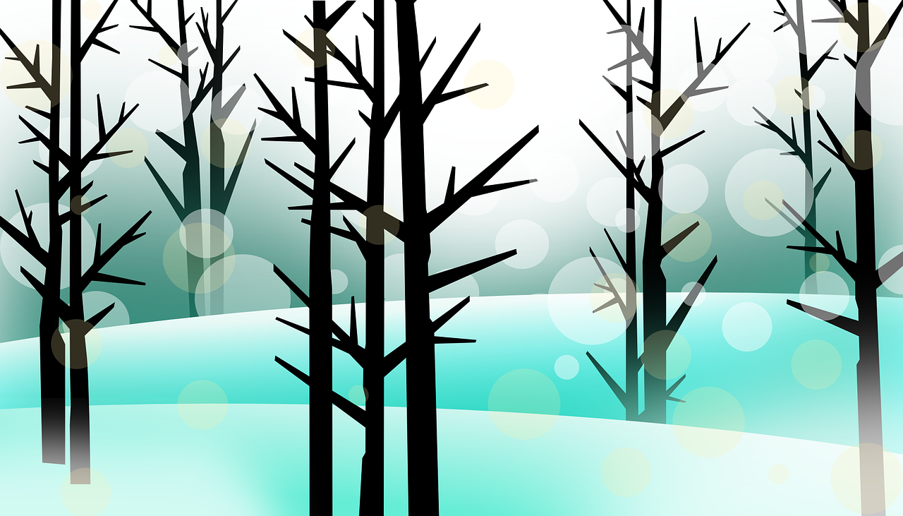 how to draw a tree. winter 1