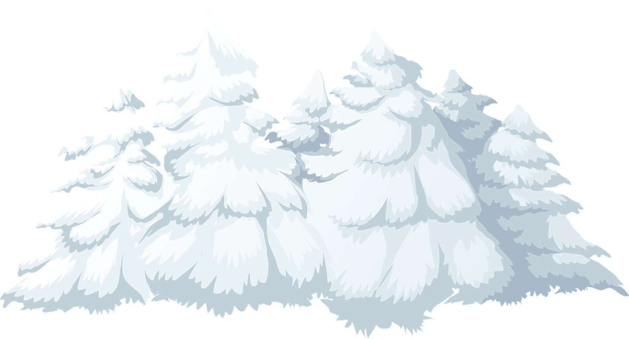 how to draw a tree. winter 2