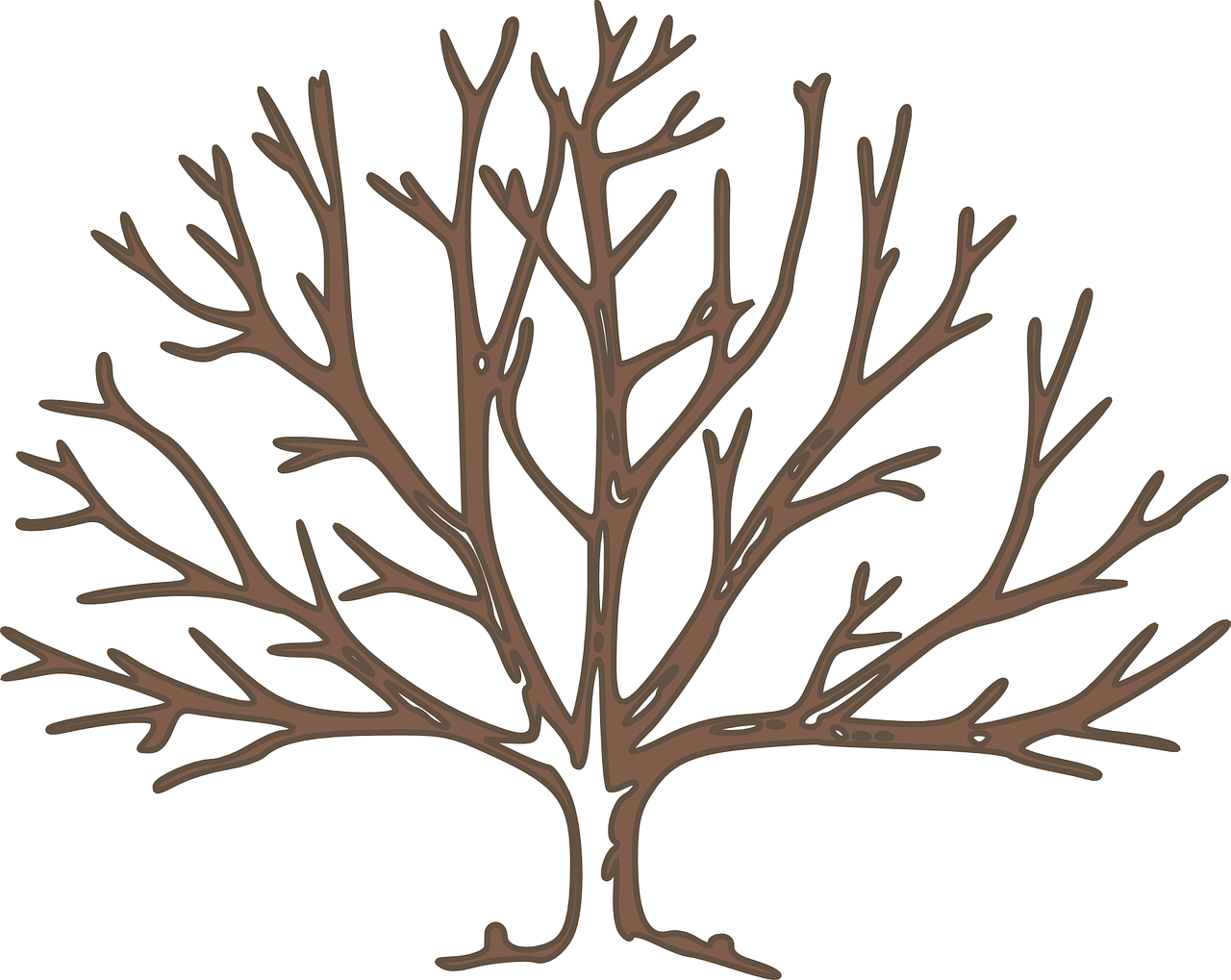 how to draw a tree. winter 5