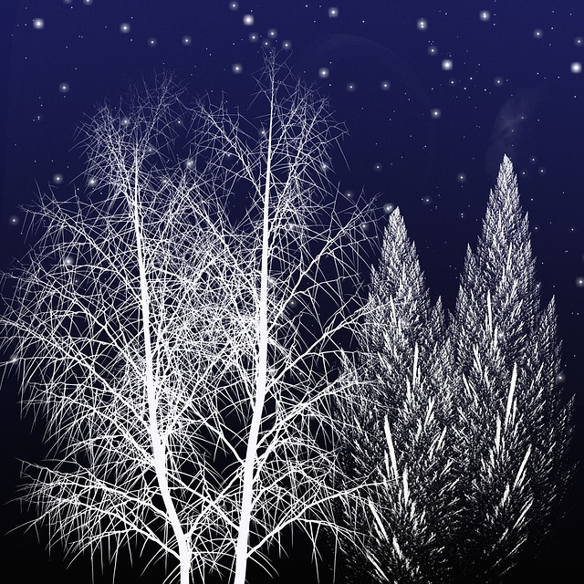 how to draw a tree. winter 7