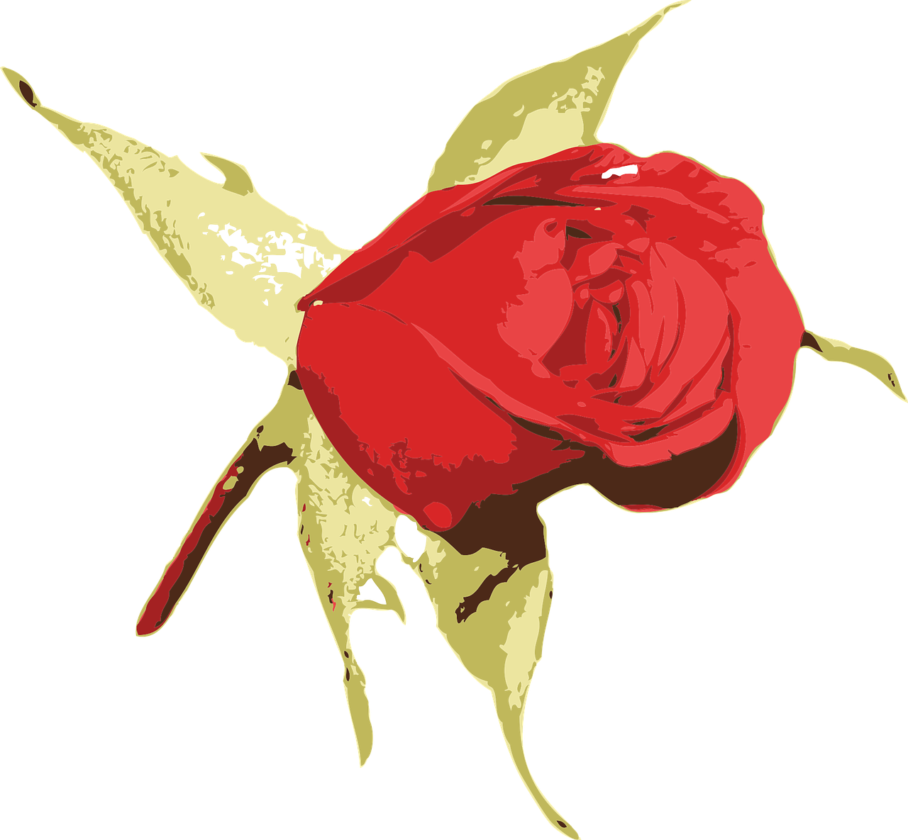how to make a rose 1