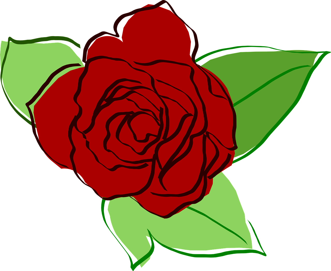 how to make a rose 13